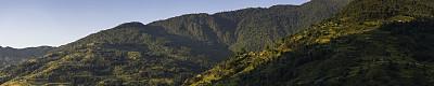 安纳普纳生态保护区,尼泊尔,梯田,喜马拉雅山脉,农舍,森林,传统,稻米梯田,安娜普娜环线,高地