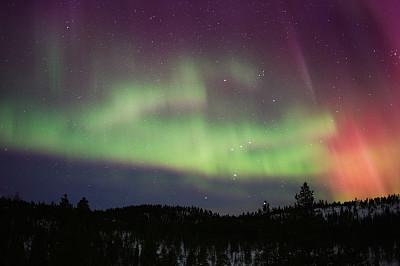 北极光,猎户座大星云,昴宿星团,欧洲赤松,磁场,北方针叶林,极光,拉普兰,针叶林,天空