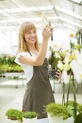 仅一朵花,快乐,植物苗圃,花卉商,女性,植物馆,花店,垂直画幅,兰花,仅成年人