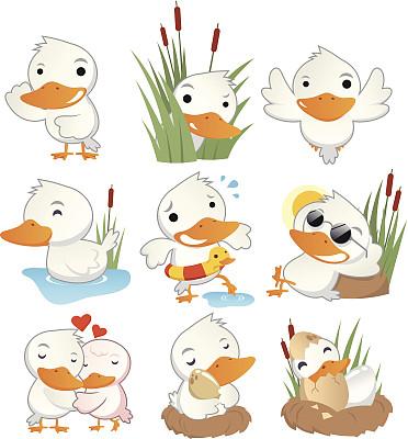 动作,可爱的,装饰鸭,易被击中的目标,鸭子,公鸭,轻轻浮起,家禽,绘画插图,符号