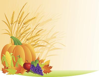 秋天,农作物,自然,梨,绘画插图,南瓜,玉米,苹果,葡萄,叶子