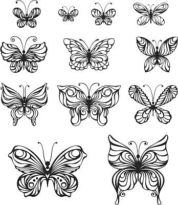 蝴蝶,绘画插图,美,形状,动物身体部位,夏天,组物体,计算机制图,计算机图形学,图像