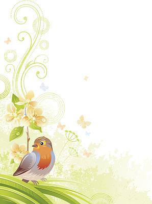 知更鸟,垂直画幅,留白,背景,鸟类,枝,水果,桃花,苹果花,绘画插图