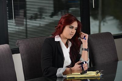 女性,使用电脑,专业人员,会议桌,染红的头发,办公室,美,笔记本电脑,拉美人和西班牙裔人,水平画幅