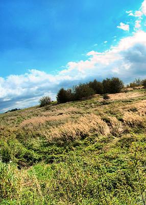 夏天,草地,垂直画幅,天空,留白,高视角,无人,早晨,户外,草