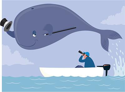 鲸,注视镜头,观看鲸鱼,电影摄影师,大礼帽,自然,拍摄场景,绘画插图,海洋生命,卡通