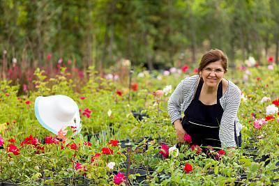 玫瑰公园,园艺高手,花店,园艺手套,植物苗圃,留白,业主,仅成年人,园艺师,工业