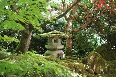 星和园,灯笼,枫树,混凝土,花岗岩,雪,图像,日本灯笼,花园装置,公园