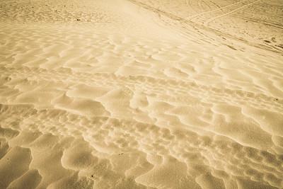 沙特阿拉伯,沙子,利雅得,轮胎印,皮卡车,水平画幅,户外,业余爱好,轮胎,中东