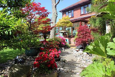 垫脚石,星和园,鹅卵石,阳光房,房屋,图像,杜鹃花,花园路,盆景,底座