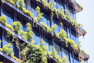 直立式花园,墙,建筑外部,摩天大楼,生活方式,簇叶从生的,星和园,水平画幅,枝繁叶茂,无人