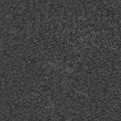 噪声,砂纸,粗糙的,背景,美,式样,黑色,菌腮,照相写实主义,正面视角