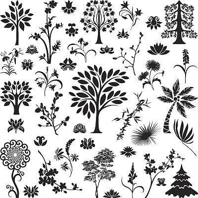 植物群,卷丹,鈴蘭,栗樹,蘋果花,棕櫚葉,野風信子,印度草醫學,柳樹,荷花