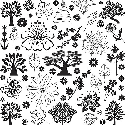 植物群,白楊葉,盆景,橡樹葉,棕櫚葉,野風信子,蘋果花,印度草醫學,蘭花,荷花