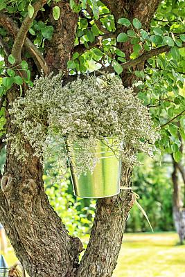 婚礼,插花术,自然,垂直画幅,公园,绿色,无人,浪漫,户外,花束