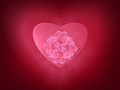 心型,边框,艺术,水平画幅,形状,绘画插图,玫瑰,仅一朵花,部分,漩涡形