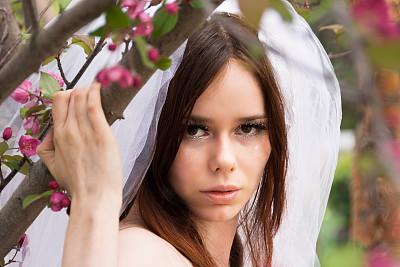 特写,青年人,枝,新娘,花朵,拿着,野苹果树,海棠,苹果花,正面视角