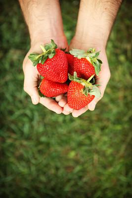草莓,清新,捧着,垂直画幅,水果,浆果,有机食品,手,拿着