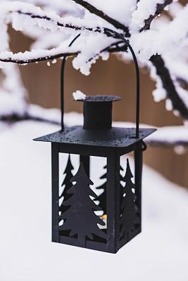 雪,灯笼,枝,洋烛,茶蜡,冰柱,垂直画幅,留白,新年