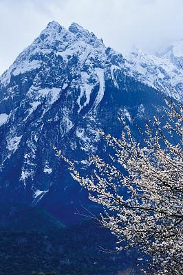 桃树,山,雪山,梨树,珠穆朗玛峰,垂直画幅,天空,留白,雪,无人