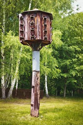 鸽房,木制,鸟笼,小鸟笼,垂直画幅,公园,洞,无人,鸟类,古老的