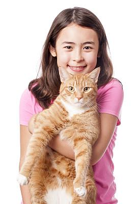 猫,橙色,女孩,杂种猫,12岁到13岁,短毛猫,垂直画幅,美,注视镜头,美人