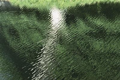 水,树荫,波纹,枝繁叶茂,自然,留白,水平画幅,绿色,无人,抽象