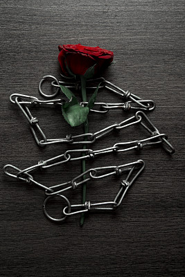 链,玫瑰,红色,垂直画幅,贺卡,留白,面无表情,纹理效果,古老的,古典式
