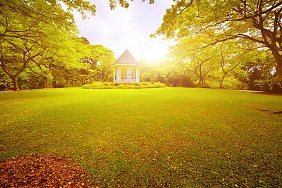 园林,宁静,自然美,新加坡,凉棚,蔓藤架,亭台楼阁,草皮,天空,公园