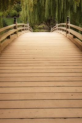 桥,垂柳,星和园,柳树,垂直画幅,木制,无人,山,特写,摄影