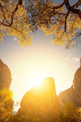 锡安国家公园,垂直画幅,天空,旅行者,石头,犹他,彩色图片,光,悬崖,橙色