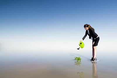 商务,商务关系,留白,商务策略,水平画幅,白人,仅成年人,青年人,植物,空的