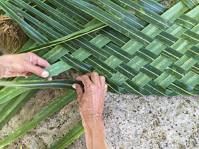 纺织,棕榈树,半月岛,瑞夫灯塔,复叶,伯利兹,椰子树,加勒比海,艺术,水平画幅