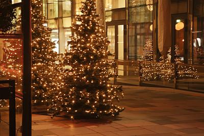 圣诞树,伦敦城,奥斯陆,水平画幅,夜晚,无人,散焦,城市生活,建筑外部