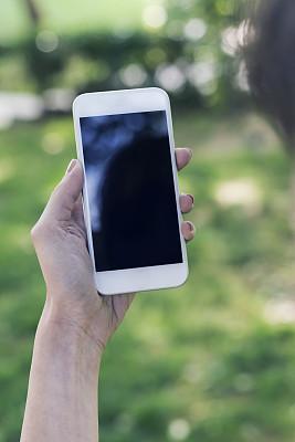 电话机,液晶显示,垂直画幅,留白,电子商务,拨电话,想法,专业人员,技术,计算机