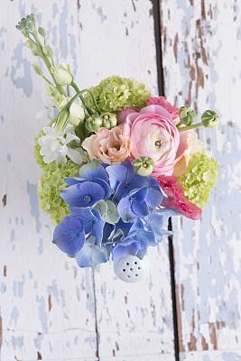 洋桔梗,八仙花属,自然,垂直画幅,美,留白,绿色,无人,蓝色,白色