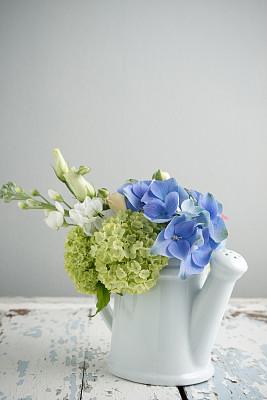 洋桔梗,八仙花属,自然,垂直画幅,美,留白,绿色,蓝色,白色,植物