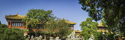 故宫,北京,活力,全景,枝繁叶茂,走廊,太和殿,明朝风格,天空,地名