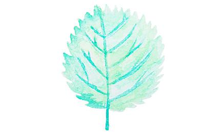 叶子,水平画幅,纹理效果,绿色,无人,水彩颜料,水彩画颜料,纹理,多色的