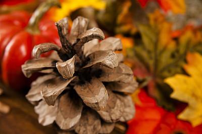 中心装饰品,秋天,干花,餐桌,褐色,水平画幅,无人,组物体,干的,叶子