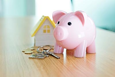 房屋,救球,玩具屋,小猪扑满,房间钥匙,褐色,储蓄,水平画幅,无人,符号