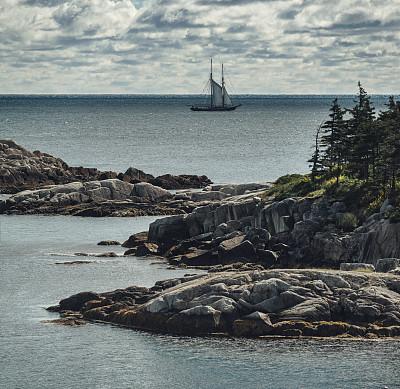 高桅横帆船,海湾,船体,水湾,船首,新斯科舍,加拿大文明,留白,水平画幅,无人