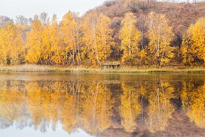 秋天,湖,自然,水,水平画幅,橙色,山,无人,色彩鲜艳,户外