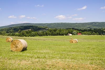 干草卷,田地,热霾,天空,干草,水平画幅,无人,户外,云景,稻草