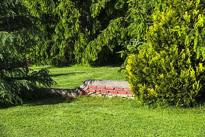 园林,自然,松树,水平画幅,枝繁叶茂,无人,瓷砖,建筑外部,户外,草