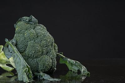 黑色背景,清新,绿色,西兰花,水平画幅,精神振作,素食,无人,膳食,维生素