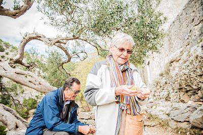 布拉奇岛,欧洲,老年人,克罗地亚,徒步旅行,朝拜者,油橄榄树,桔子,老年伴侣,70到90岁