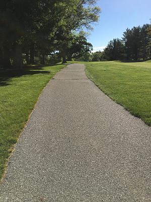 高尔夫球车,小路,车道,单车道,高尔夫球运动,垂直画幅,美国,无人,户外,草