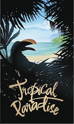 鸡尾酒,夏威夷,雨林,明信片,巨嘴鸟,海滩,垂直画幅,美,无人