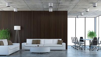 会议桌,办公室,沙发,会议中心,会议室,会议,记者招待会,现代,盆栽植物,高层管理